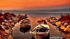 İznik Gölü Balık Türleri: İznik Gölünde Yaşayan Balıklar