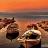 İznik Gölü Balık Türleri