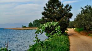 iznik Gölü Gezi Rehberi