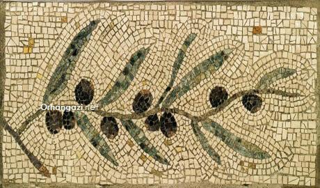 Zeytin ile ilgili şiirler, zeytine dair iktibaslar alıntılar