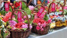 Bursa Festivalleri ve Bursa'nın Kardeş Şehirleri